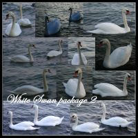 White swan package2 by Iardacil-stock