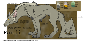 .: Pandi Ref sheet- 2013 :. by BeachBumDunkin