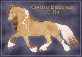 Cavitto Discovery ID 114 by BrindleTail
