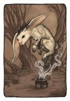 Out of the Hat by ursulav