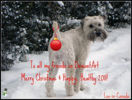 To All My Friends on DA by Lou-in-Canada