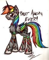 Rainbow Scratch is best OC alicorn by iRoxykun