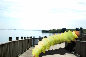 Giant Caterpillar by ryanzz
