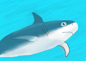 I DREW A SHARK WITH MY HEAD by Idellechi