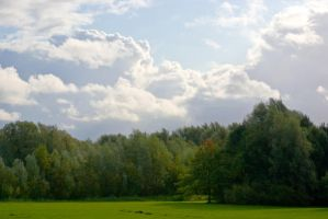 Trees and Clouds by steppelandstock