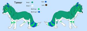 Tanner Ref by Guardian-paws