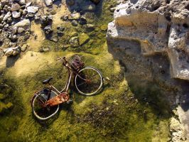 Forgotten Bike by awynsberghe