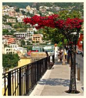 Positano - Framed in Flowers by AgiVega