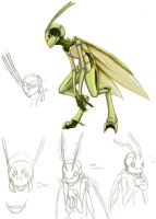 Grasshopper guy by DarkKitsunegirl