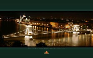 Budapest Chainbridge WP Wide+N by Wyco