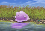 Ditto by RacieB