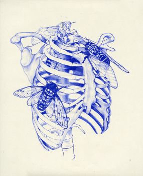 cicada cage (blue) by reminisense