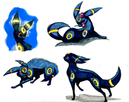 Umbreon Postures by Bedupolker