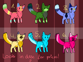 Cat Adopts by Sleage