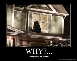 Why? by That-Love-Voodoo
