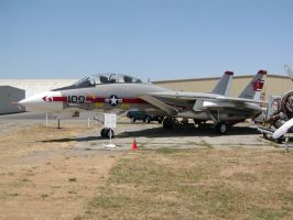 PCAM F14 Tomcat 3 by mean