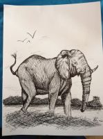 Elephant doodle by DaggarHeart