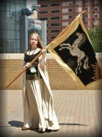 Eowyn, Shieldmaiden of Rohan by MirroredSilhouettes