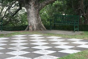 Giant Chessboard Revisited.5 by Mind-Matter