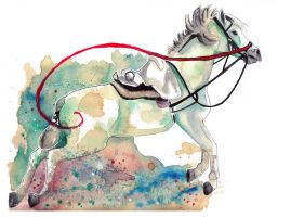 Lipizzaner - Capriole by Paintwick