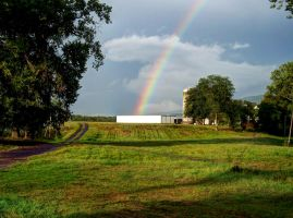 Rainbow Farm - Mt. Jackson, Va by jim88bro