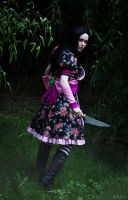 Alice: Madness Returns by Miko-Bura