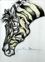 Zebra - Spirit by TedTonkin