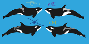 orca Adopts set 3- CLOSED by GypsySkye