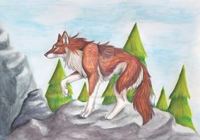 She-wolf by CaptainMorwen