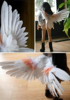 Baby Aphrodite Wings White by IcarusLoveMedley