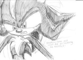 Shadow the Hedgehog by TieWolf