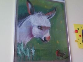 Platero by DholeSoul