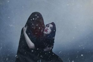 My winter storm by TheComtesse