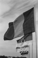 Flags of the Great War by PLutonius