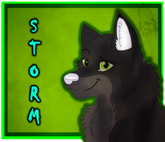 Commission - Storm by Krissi2197