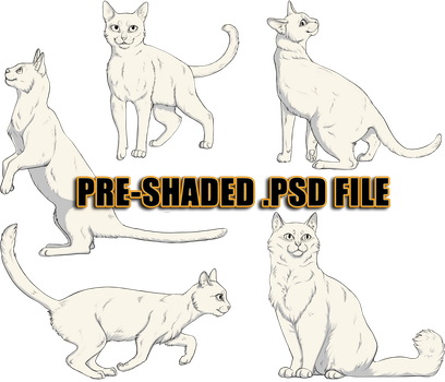 Ready to Colour, Pre-Shaded Cat Pack by heylorlass