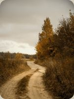 the autumn road by A-l-a-s-s-e-a
