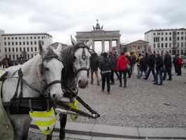 carriage horses by RatteMacchiato