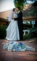 Jered and Katie 1 by Shelagnoa