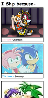 My Sonic Shipping Meme by ameth18
