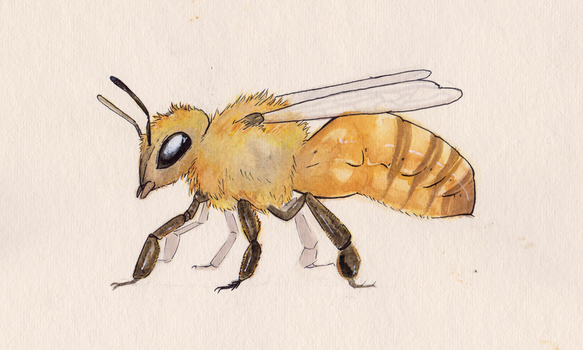 Just a Bee by Ossifray