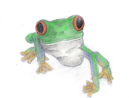 frog by Sarippus