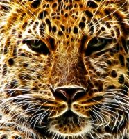 Amur Leopard: Fractalius Re-Edit by nerdboy69