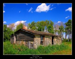 Homesteading by altered-states