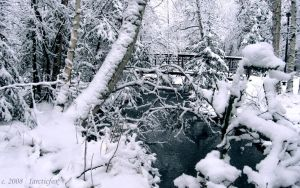 WINTER'S SNOWY HIDDEN BRIDGE by 1arcticfox