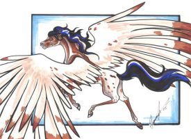 Dancer, Appy Pegasus by SummerJackel
