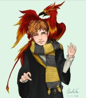 Newt meets Fawkes for the first time  by CassAnda097