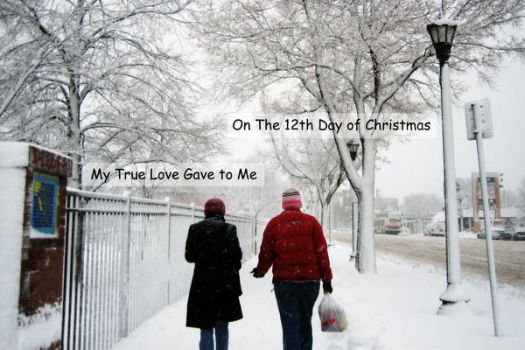 2009 12th Day of Christmas by 7x7