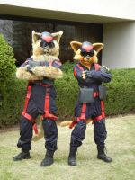Swat Kats by FeatheredCritter