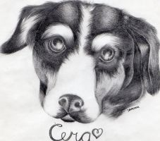 cera the dog by cuteart13